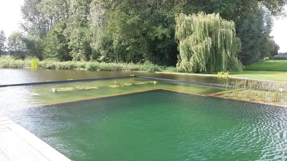 Natuurlijke zwemvijver for Vijverpomp voor grote vijver